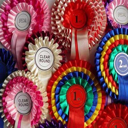 horse dog show award rosette